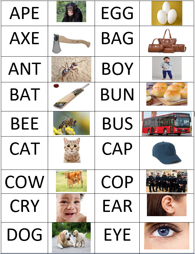 3 letter words list