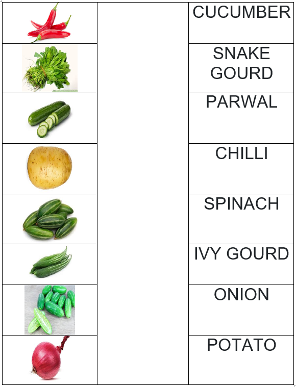 Vegetable names and images