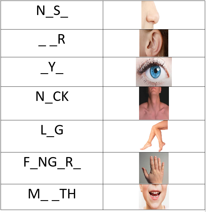 body parts using vowels